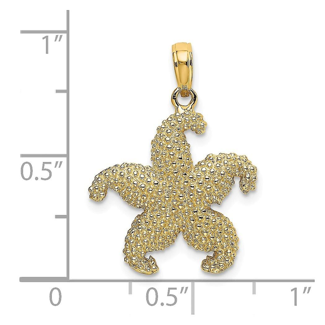 14k Gold Puffed Sea shell Nautical Starfish Pendant Necklace 2 d Jewelry Gifts for Women - 2.1 Grams