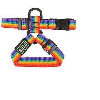 Bub's Arnes Rainbow 20 mm (Dogs , Collars, Leads and Harnesses , Harnesses)