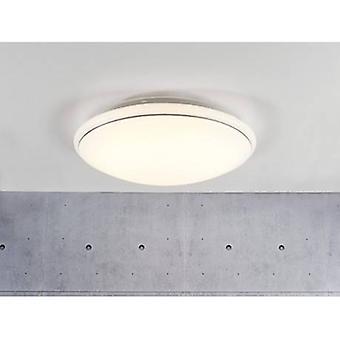 Led Medium Flush Ceiling Light White