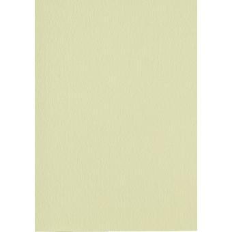Papicolor 6X Cartón 210X297mm-A4 Luz-Verde
