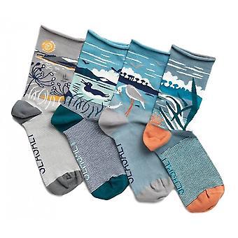 Seasalt Postcard Socks Box Of 4 Pack (idyllische Eilanden Mix)