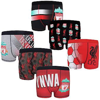 Liverpool FC Ufficiale Calcio Regalo 3 Pack Boys Crest Boxer Shorts