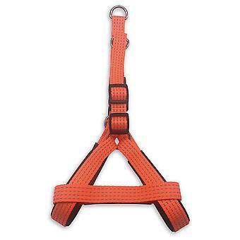 Arquivet Orange Plain Nylon Dog Harness (Dogs , Collars, Leads and Harnesses , Harnesses)