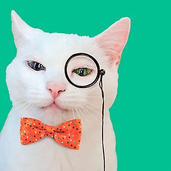 Trixder Tarjeta Gato con Monóculo (Cats , Training Aids , Anti-Stress)