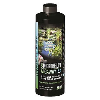 Microbe-Lift Algaway 5.4 for Ponds - 16 oz (Treats 5678 Gallons)