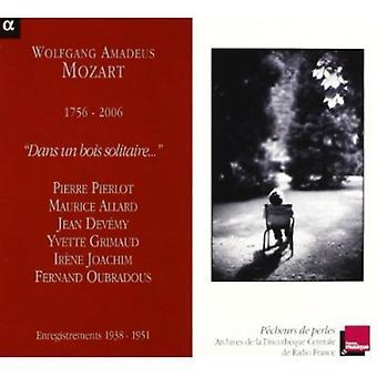 W.a. Mozart - Mozart: Import USA Dans Un Bois Solitaire [CD]
