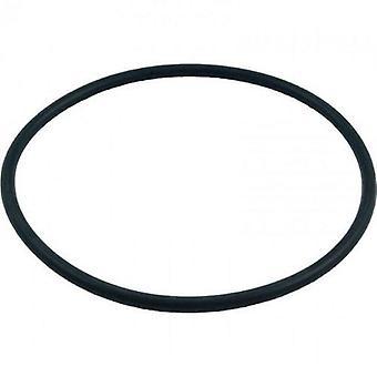 Pentair 272541 O-Ring for bassenget eller Spa Filter og ventil