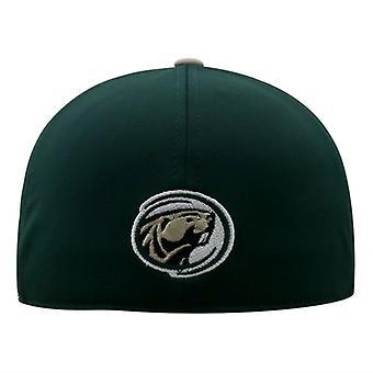 Bemidji staat bevers NCAA TOW twee Toon Stretch uitgerust hoed