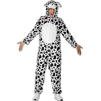 Dalmatínskej kostým.  Hrudník 38