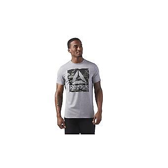 Reebok Halo Tee CF3849 universal alla år män t-shirt