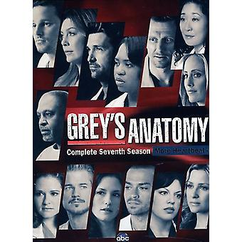 Greys Anatomy - Greys Anatomy Season 7 [DVD] USA import