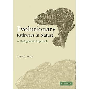 Evoluutiopolut luonnossa: fylogeneettinen lähestymistapa