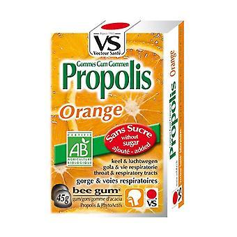 Orange Propolis Erasers 45 g (Orange)