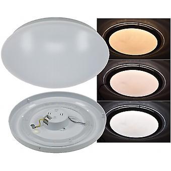 LED ceiling light lamp 12