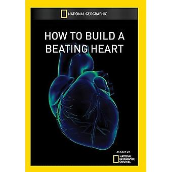 How to Build a Beating Heart [DVD] USA import