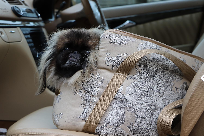 Dog Carrier Baroque Beige