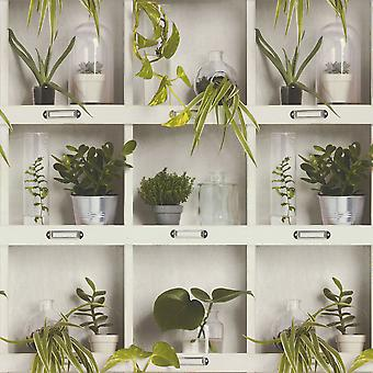 Flowerpots Wallpaper Novelty Jars Plants Floral Shelves Green Paste The Wall