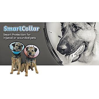 Smart Collar