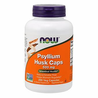 Теперь продукты psyllium husk, 500 мг, 200 капсул