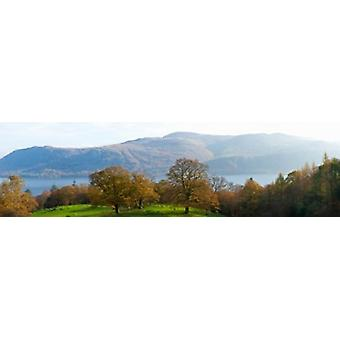 Autumn trees with mountains in background Derwent Water Lake District National Park Cumbria England Poster Print
