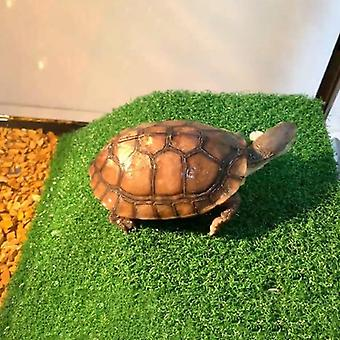 Turtle Platform, Rest Tortoise Climbing Ladder Drying Basking Terrace