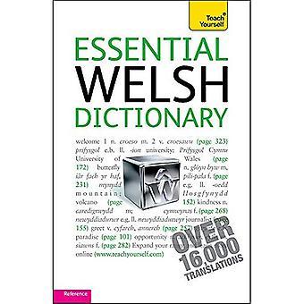 Väsentliga walesiska ordbok: Teach Yourself