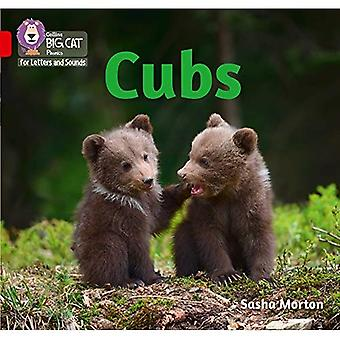Collins Big Cat Phonics for Letters and Sounds - Cubs: Band 2A/Red A (Collins Big Cat Phonics for Letters and Sounds)