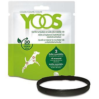 Ceva Yoos Collar Perro (Dogs , Supplements)