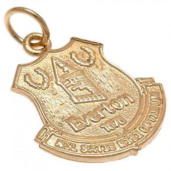 Oro 9ct Everton a sospensione