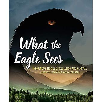 What the Eagle Sees - Indigenous Stories of Rebellion and Renewal by E
