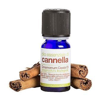 Organic Cinnamon Essential Oil 10 ml of oil