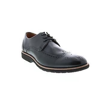 Stacy Adams Adult Mens Ethan Wingtip & Brogue Oxfords & Lace Ups