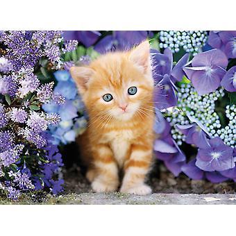 Clementoni Ginger Cat Korkealaatuinen palapeli (500 kappaletta)