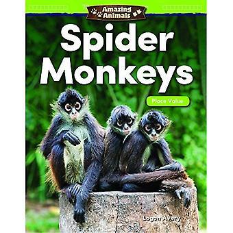 Fantastiska djur: Spider apor: placera värdet (grad 1) (matematik läsare)