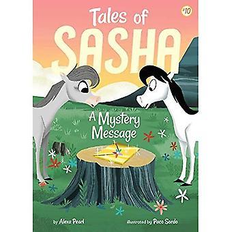 Contes de Sasha: un Message de mystère (les contes de Sasha)