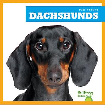 Dachshunds by Kaitlyn Duling