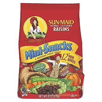 Sun-Maid Raisins Minilanches