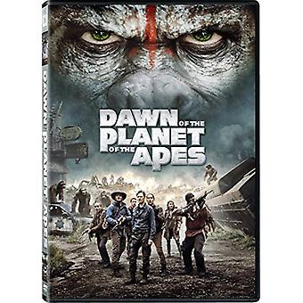 Dawn of the Planet of the Apes [DVD] USA import