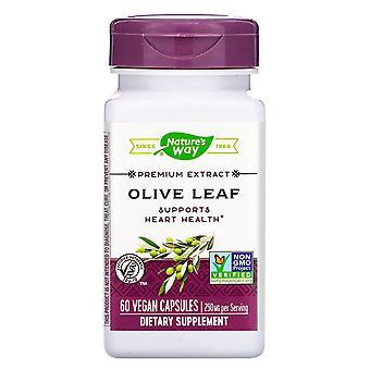 Nature's Way, Premium-Extrakt, Olivenblatt, 250 mg, 60 Vegan Kapseln