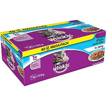 Whiskas Pouch 1 + vis selectie In Jelly 40x100g