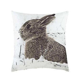 Evans Lichfield Photo Hare Cushion Cover
