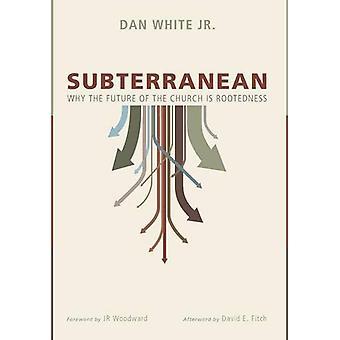 Subterranean by Dan Jr White - 9781498219556 Book