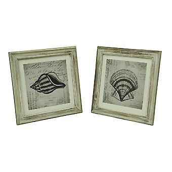 Set of 2 Sketched Seashells On French Postcard Script In Whitewashed Wood Frame