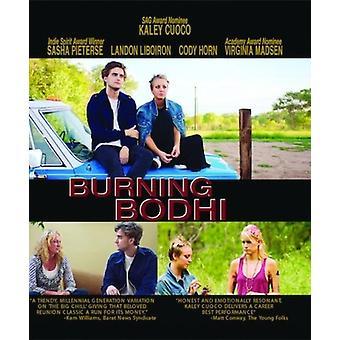 Brennende Bodhi [Blu-Ray] USA import