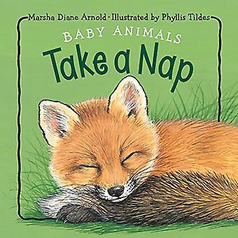 Baby Animals Take a Nap [Board Book]