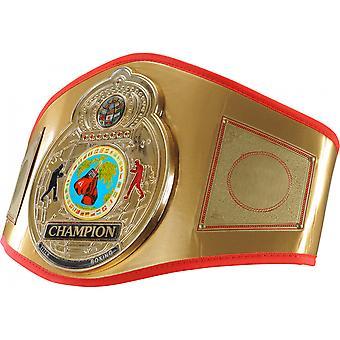 Titel boksen Flash vergulde 3-D Center plaat lederen titel riem - goud