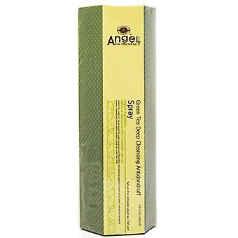 Ангел-ан-Прованс зеленый чай глубокой чистки против перхоти спрей, 3,4 унции