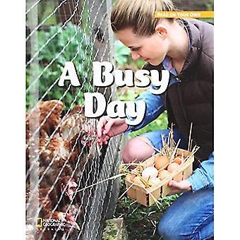 ROYO READERS LEVEL B A BUSY DA Y