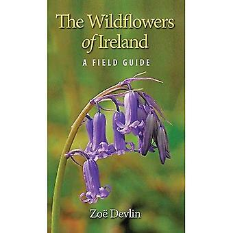 The Wildflowers of Ireland: A Field Guide