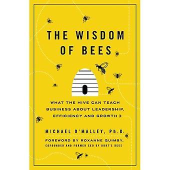 Visdomens bin: vad kupan kan lära företag om ledarskap, effektivitet och tillväxt